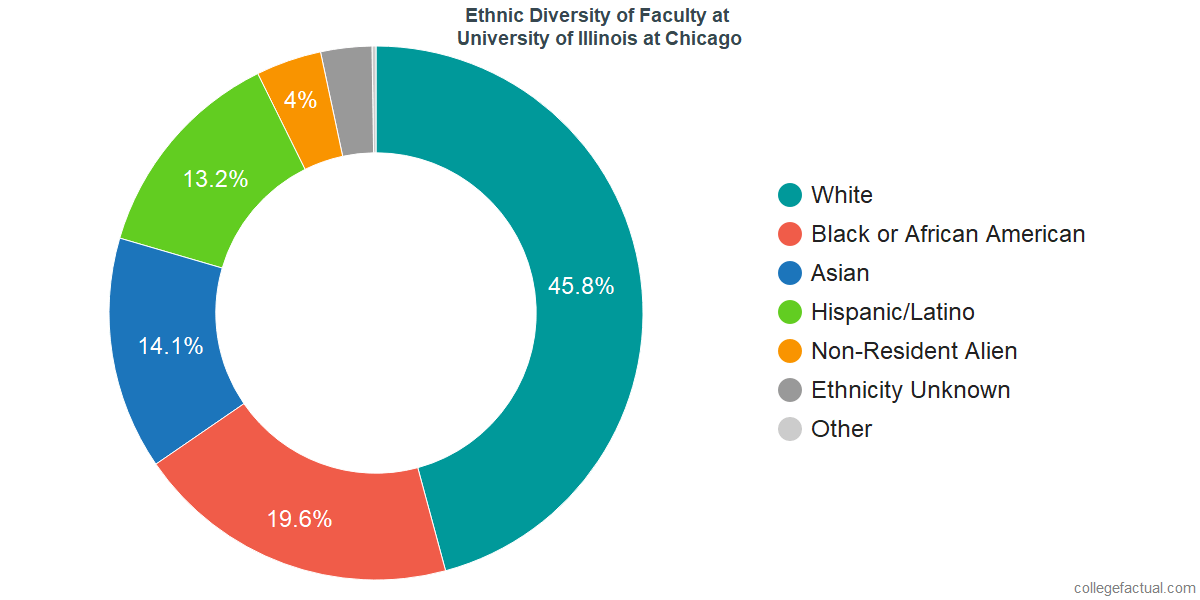 Ethnic Diversity of Faculty at University of Illinois at Chicago