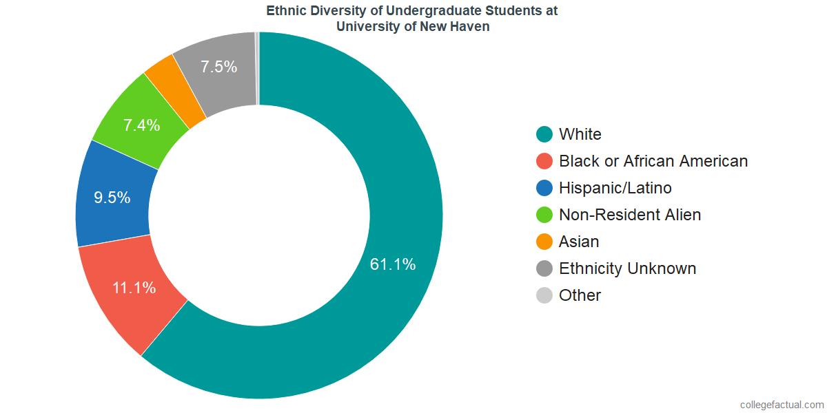 Ethnic Diversity of Undergraduates at University of New Haven