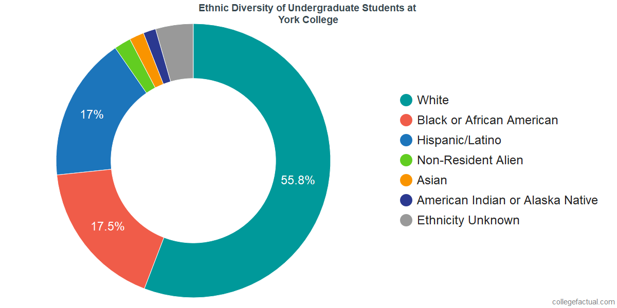 York College Diversity: Racial Demographics & More